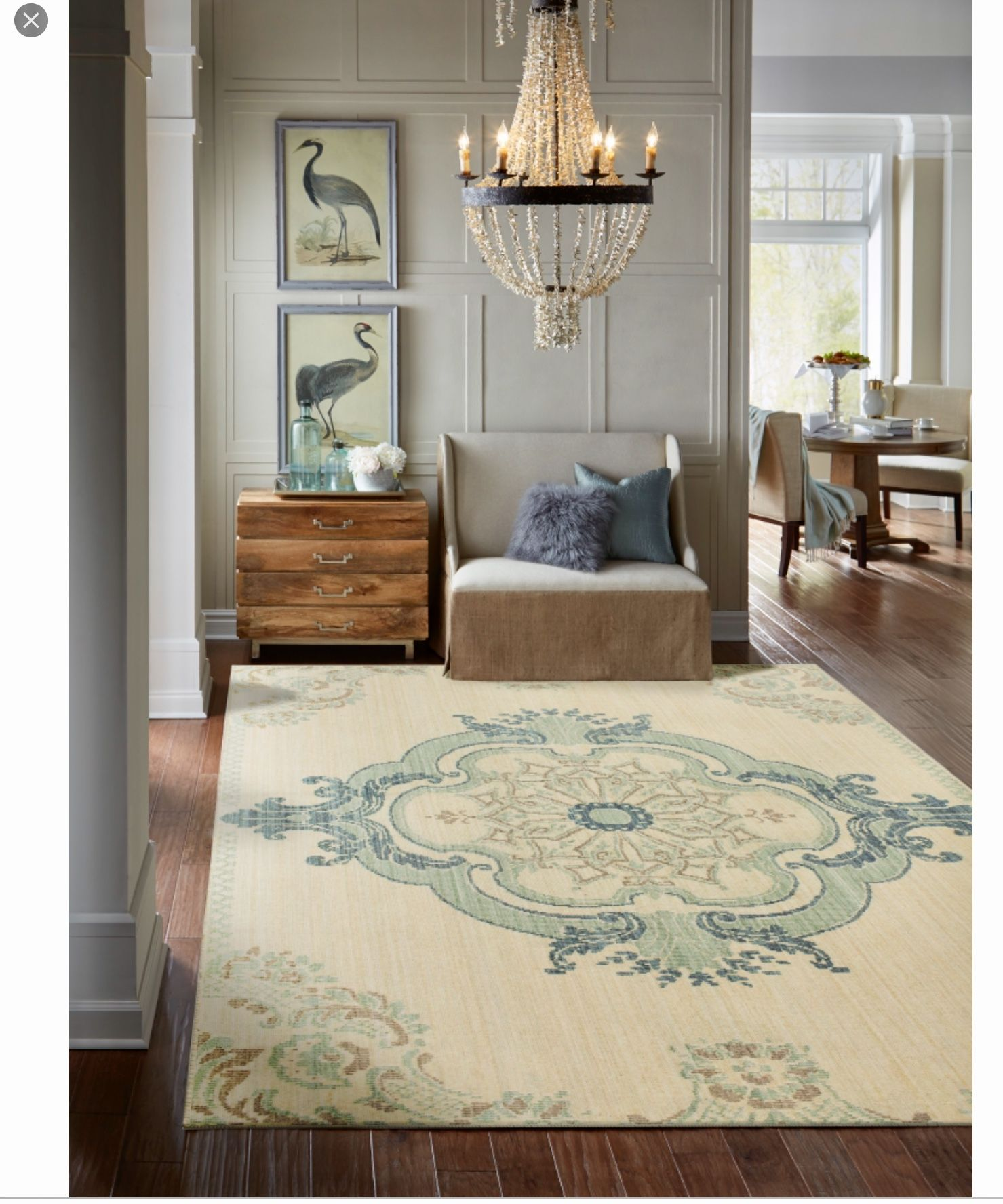 Pin By Deborah Gilley On Ideas For The House Clearance Rugs Traditional Style Rugs Home Decor