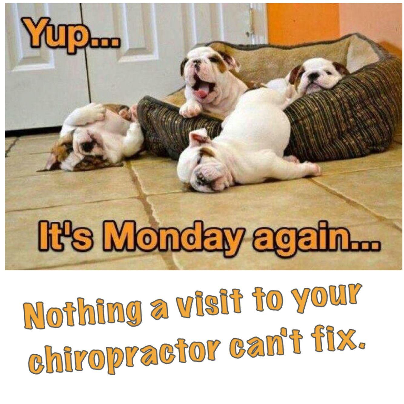 Chiropractic Mondays #chiropractic Chiropractic Arts Center of ...