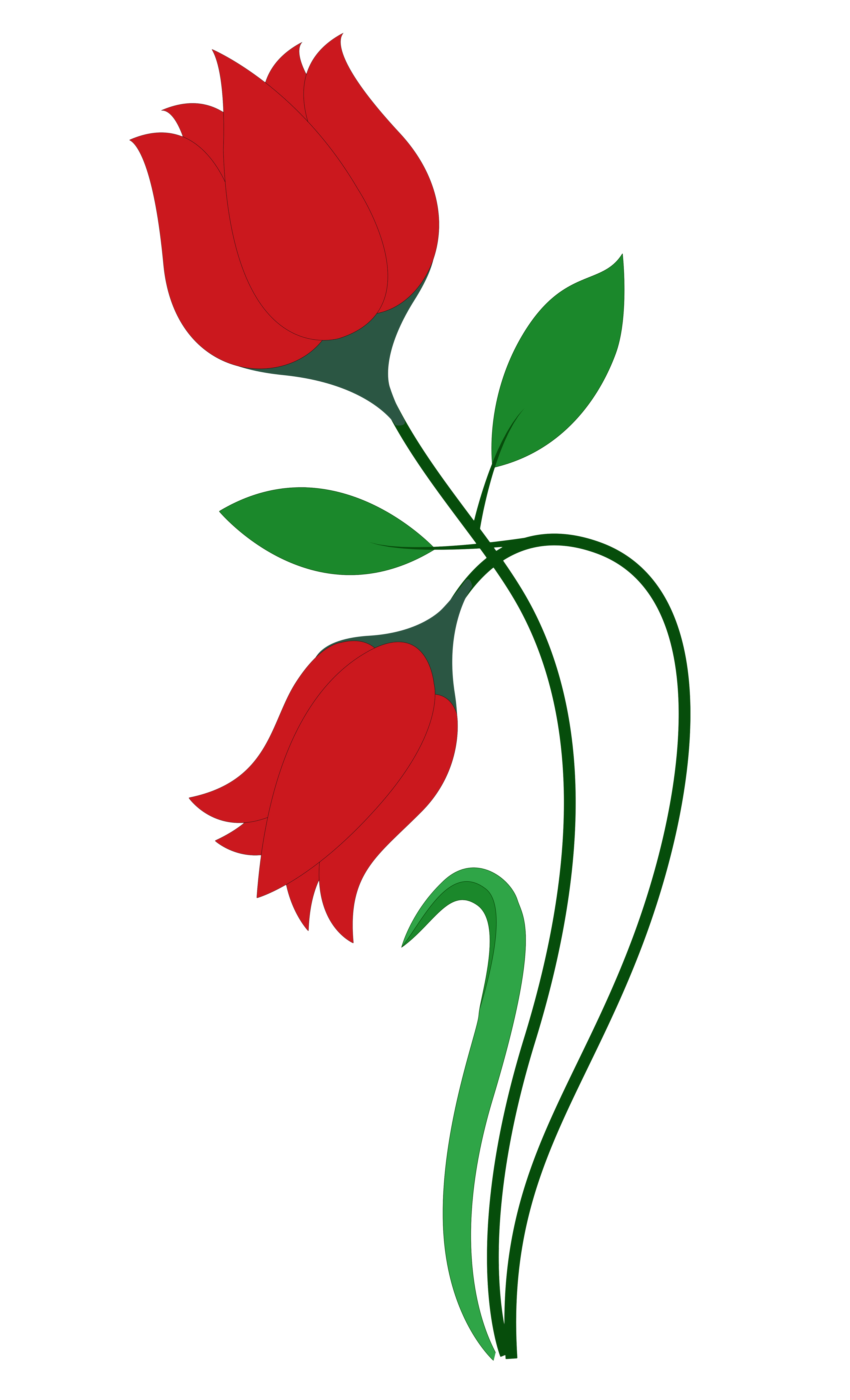 Rose Flower Vector PNG Transparent Image is a free PNG picture with transparent background ...