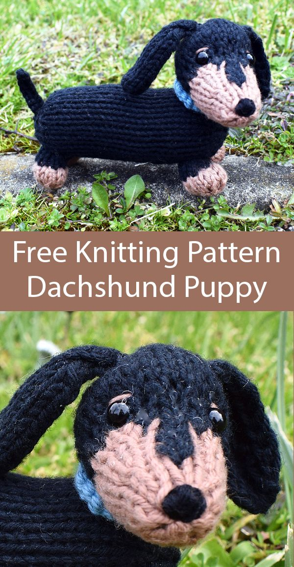 Free Knitting Pattern for Dachshund Puppy by Amanda Berry