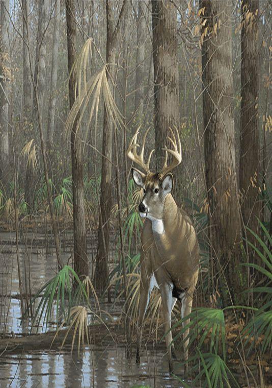 Deer In The Swamp Painting