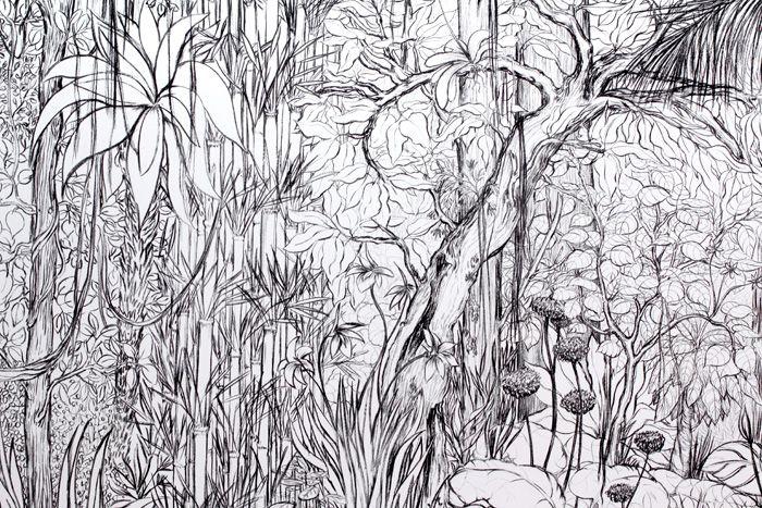 Favori Stéphanie NAVA | forets | Pinterest | Jungle, Recherche et Foret UN01