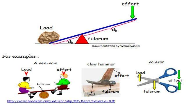 Pembelajar Pasti Bisa Manusia Claw Hammer Biomechanics Seesaw