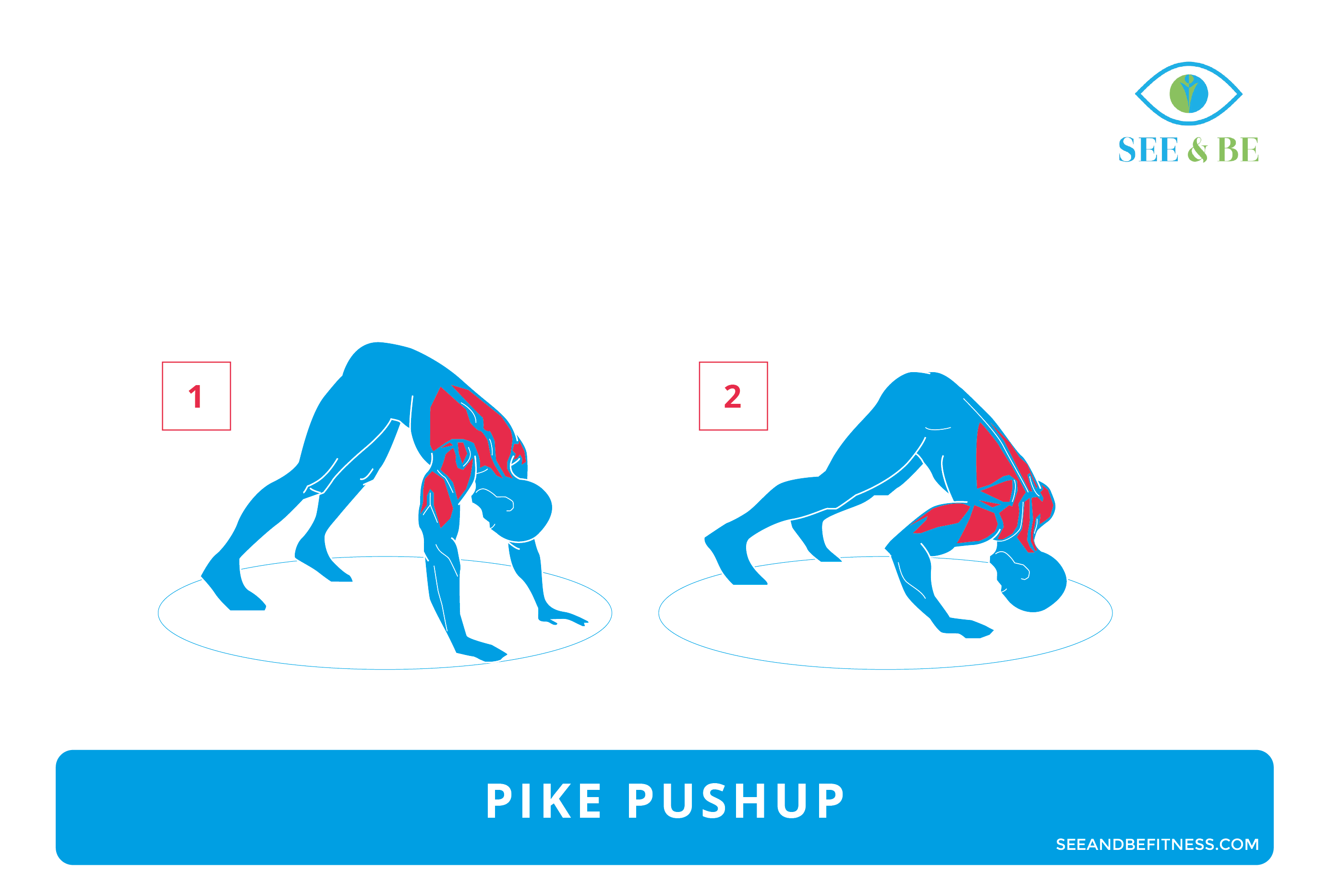 Pike Pushup, See & Be Fitness Static Cling Decal Muscle