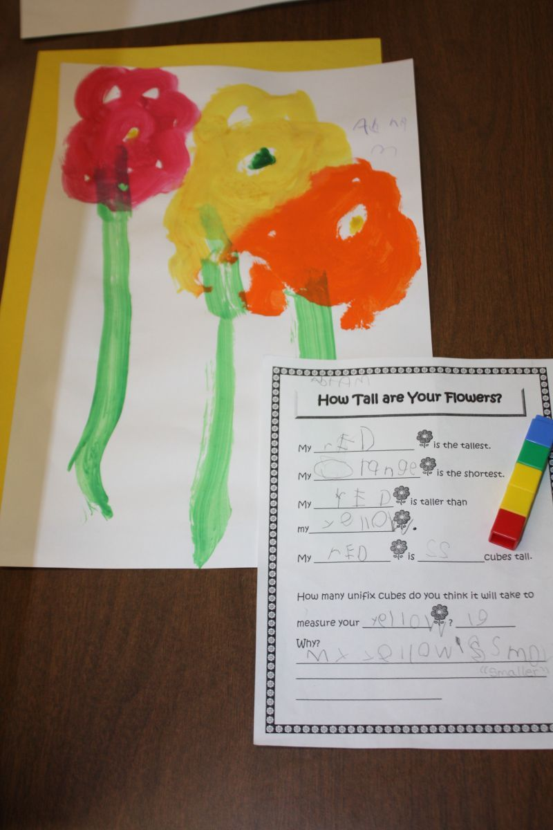 A Fun Flower Measuring Activity And Free Printable Math Worksheet