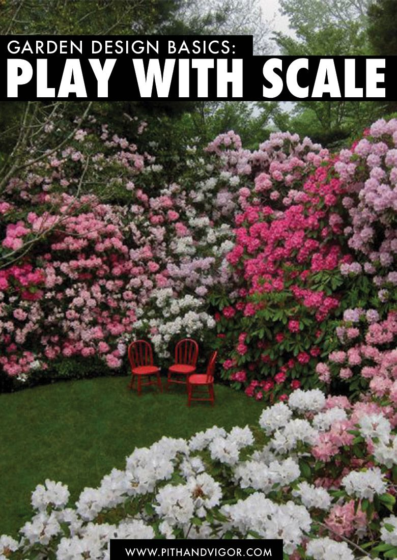 garden design basics play with scale