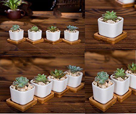 Amazon Com Cute Small White Ceramic Succulent Planters 400 x 300