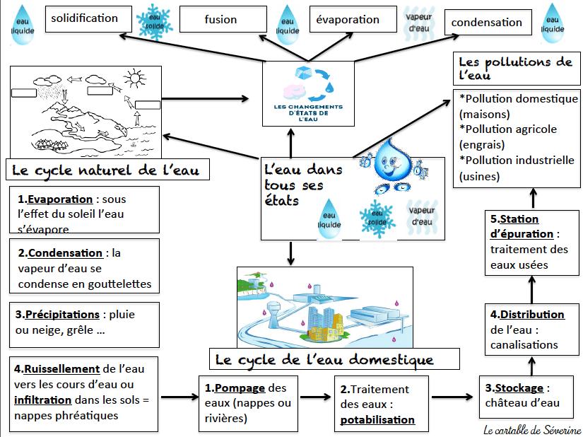 Les Etats De L Eau Carte Mentale Etat De L Eau Sciences Ce2