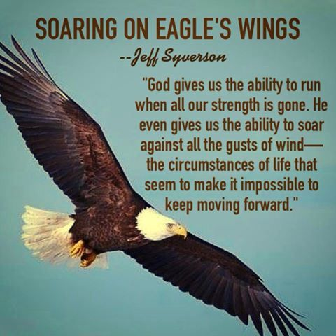 Quote From Open Up Your Heart By Jeff Syverson Eagles Quotes Quotes Quotes To Live By