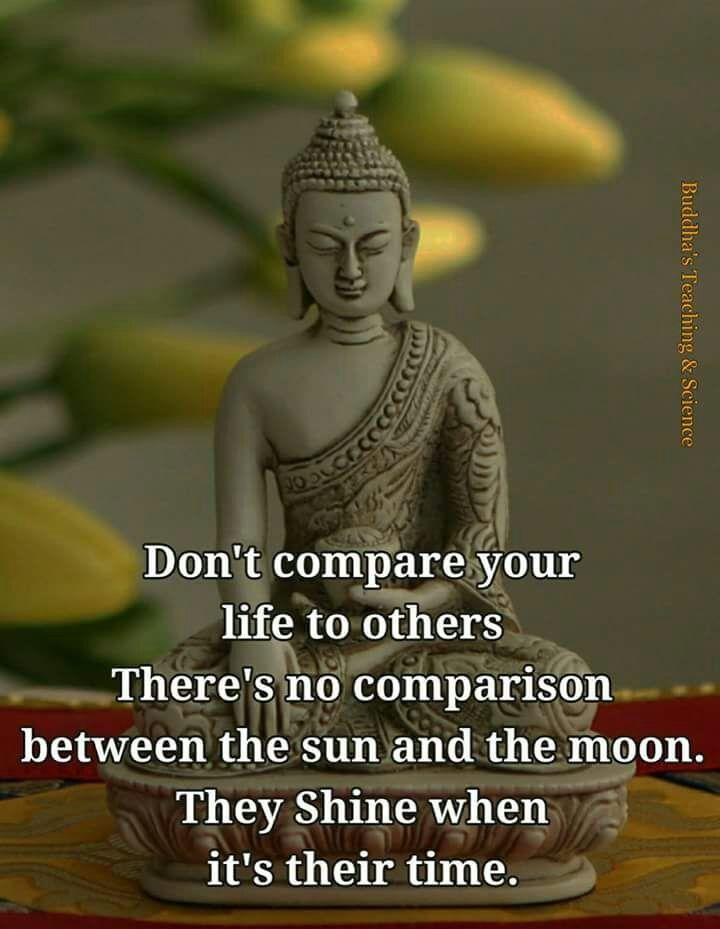Inspirational Buddha Quotes: Pin By Viji Chidam On Buddha Quotes