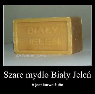Gify I Obrazki Na Wesolo Polish Memes Got Memes Funny Memes