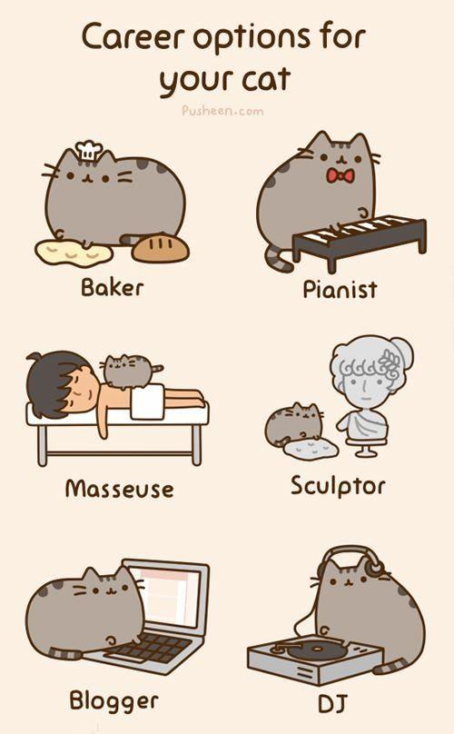 Draw Floor Contain Cat