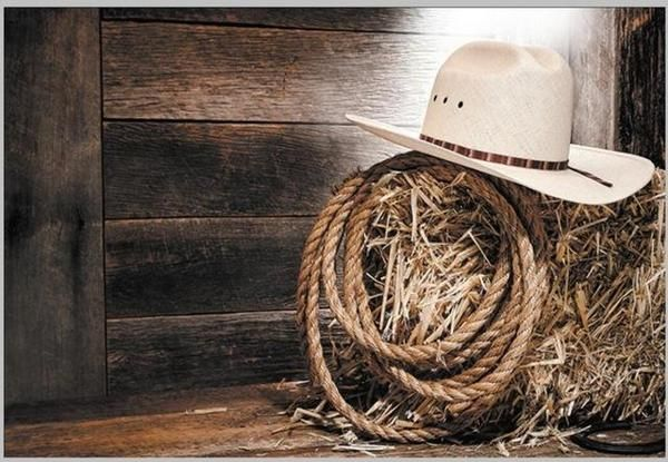 7edc5cd0803 Cowboy Hat Barnyard Old Country Barn Wood Backgrounds Vinyl cloth High  quality Computer printed party photo backdrop