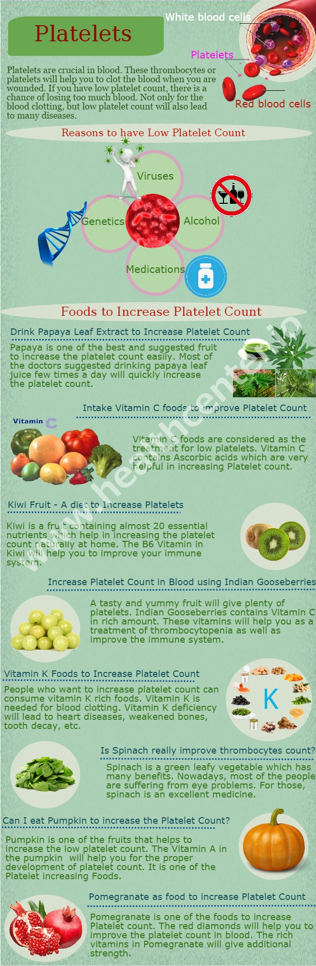 how to raise platelet count