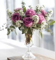 Purple roses and small white flowers arrangement with tall glass purple roses and small white flowers arrangement with tall glass vase photosg mightylinksfo