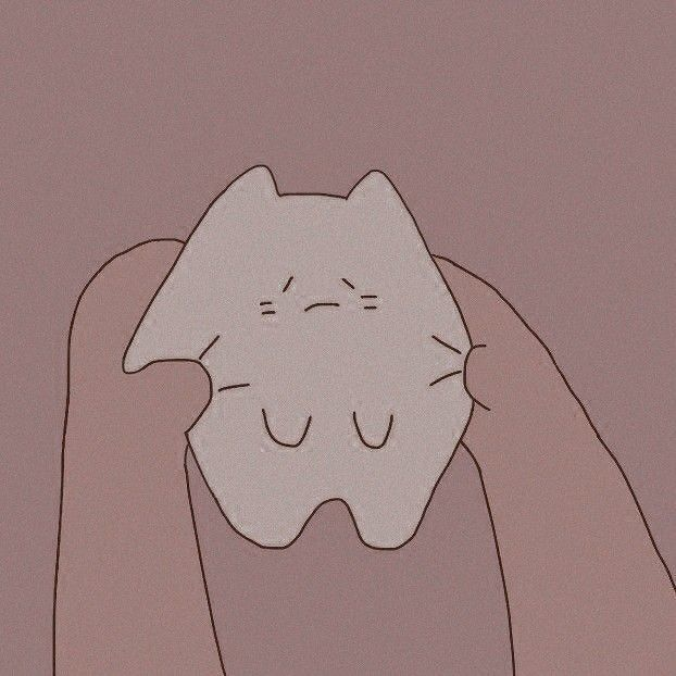 Icon Cats Pets Cute Aesthetic Anime Cute Icons Anime Art