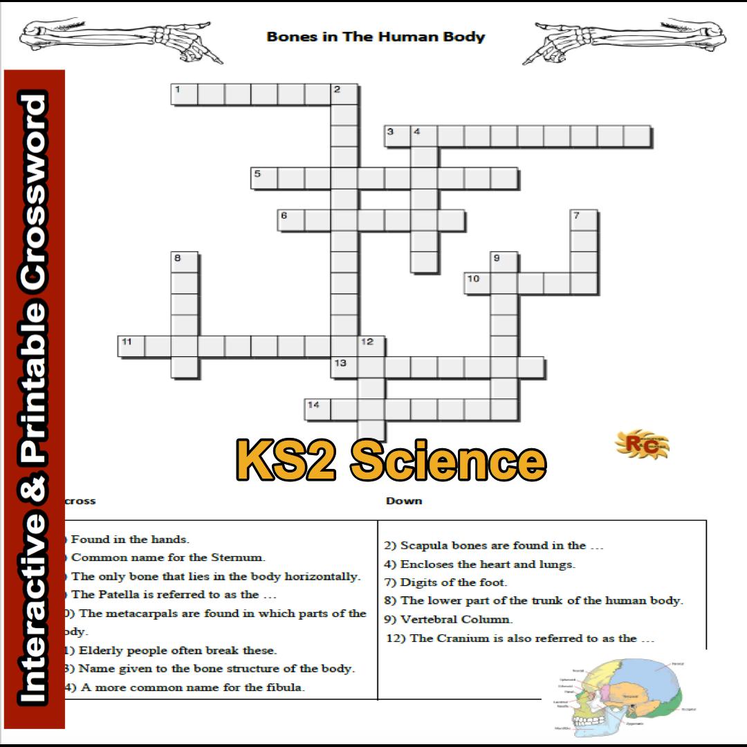 Ks2 Science