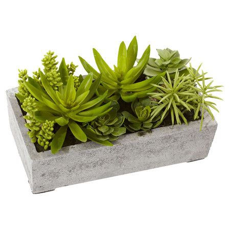 Create a lush tablescape or charming vignette with this lovely faux succulent arrangement, the perfect sunroom or library accent.  P...