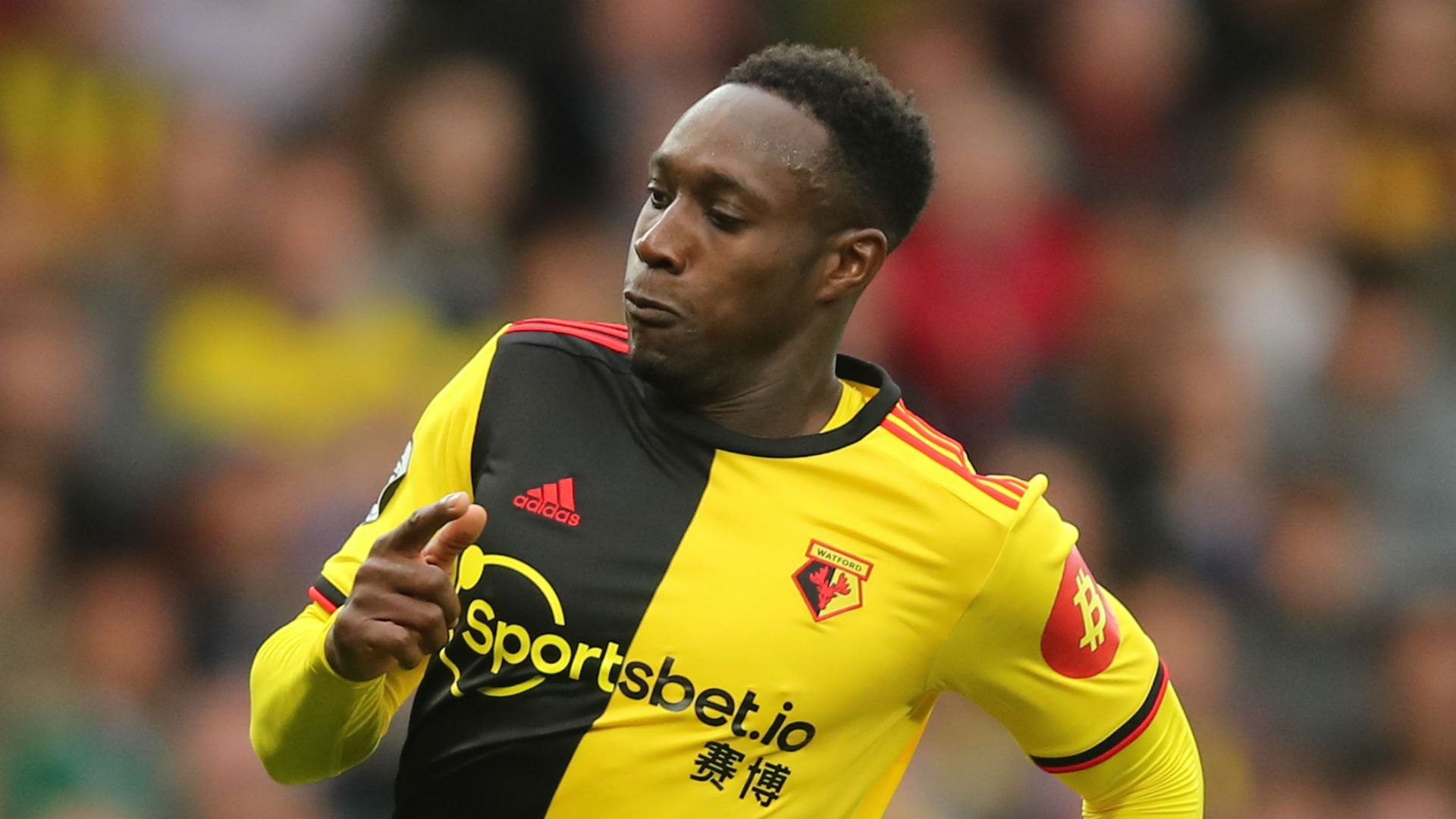 Danny Welbeck's spectacular bicycle kick propelled Watford