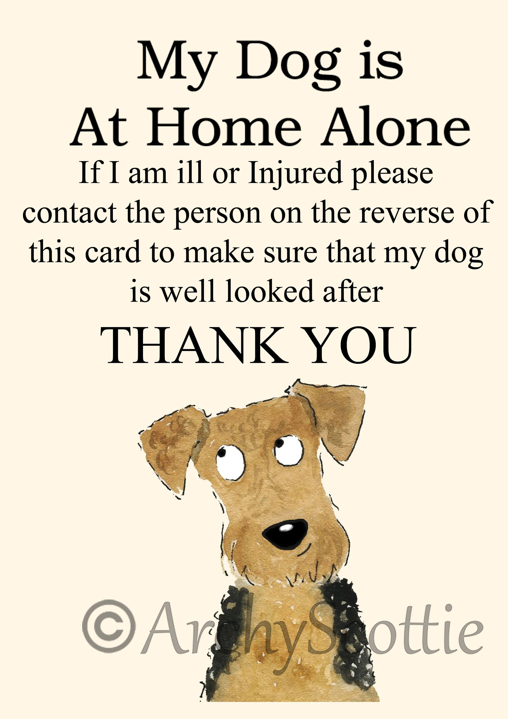 A Personal Favourite From My Etsy Shop Https Www Etsy Com Uk Listing 578515683 Welsh Terrier Dog Pet Alert Cards Wallet Terrier Dogs Welsh Terrier Pet Dogs