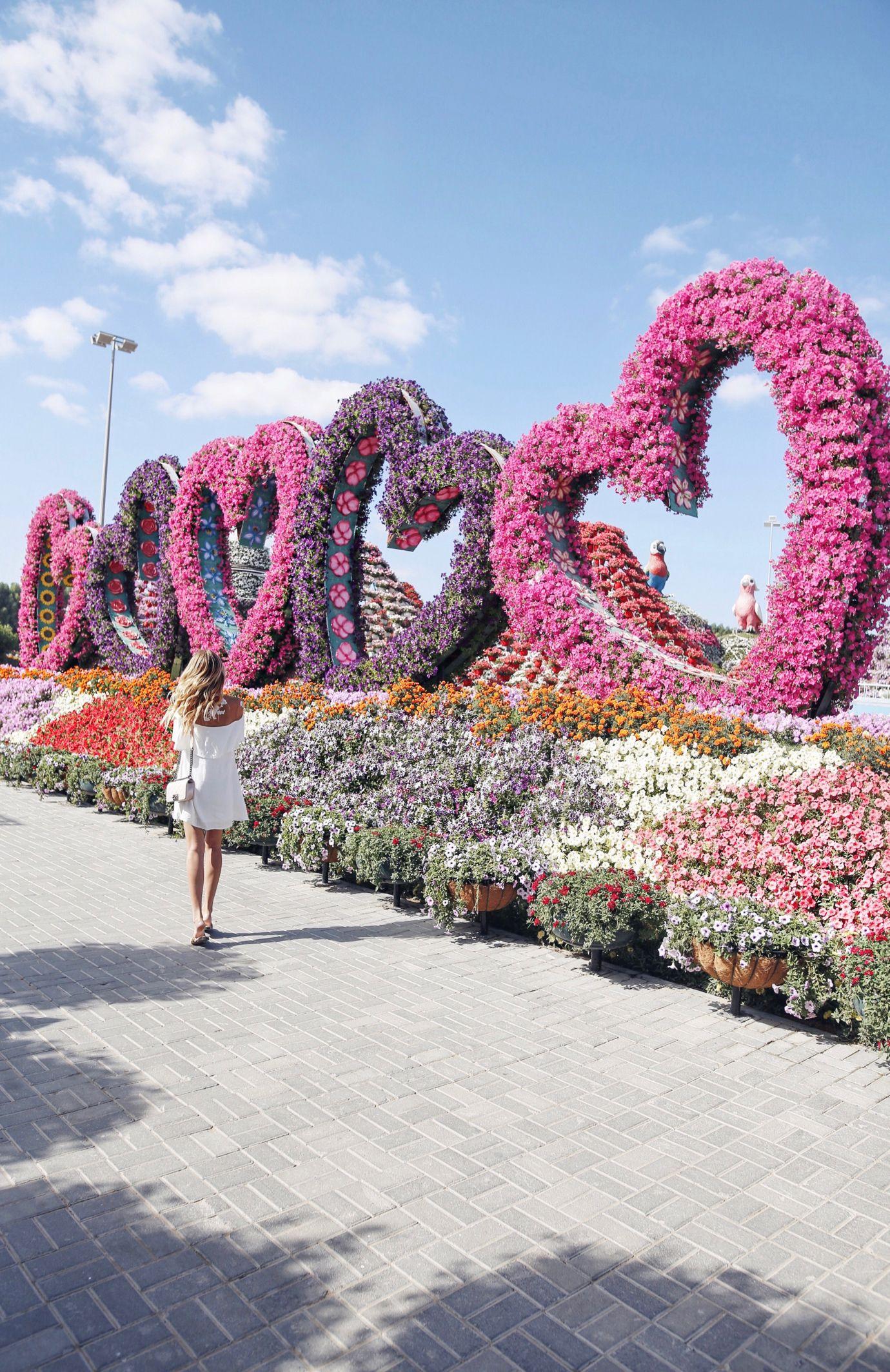 Miracle garden Places Dubai urlaub, Dubai reise und