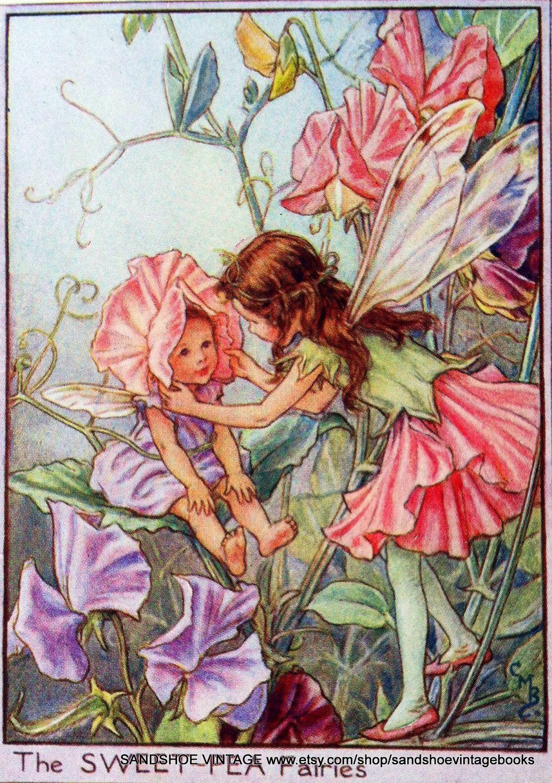 The SWEET PEA Fairies ~ Cicely Mary Barker ~