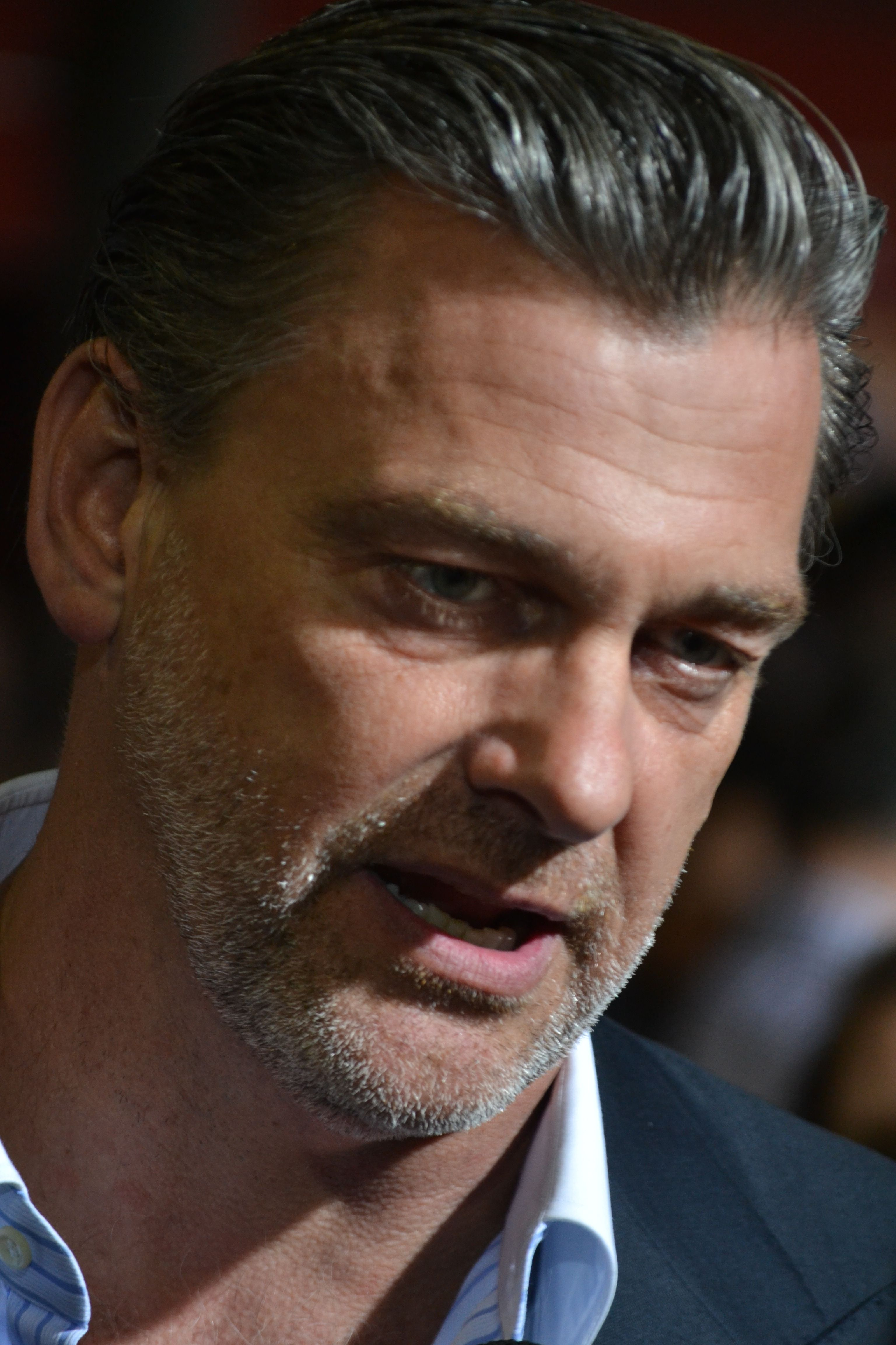 ray stevenson films