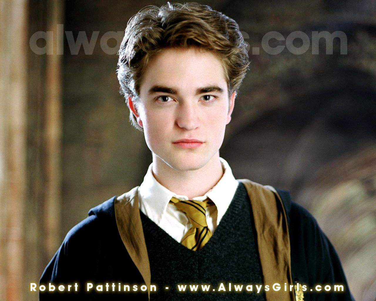 Rip Cedric But Hey If It Makes You Feel Any Better You Ll Become A Vampire That Sparkles Harry Potter Wiki Harry Potter Witch Harry Potter Characters
