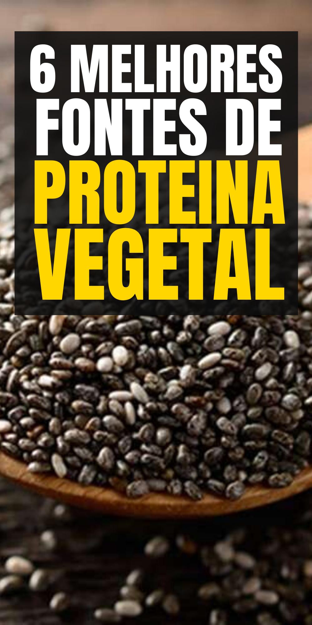 quais alimentos são fontes de proteinas