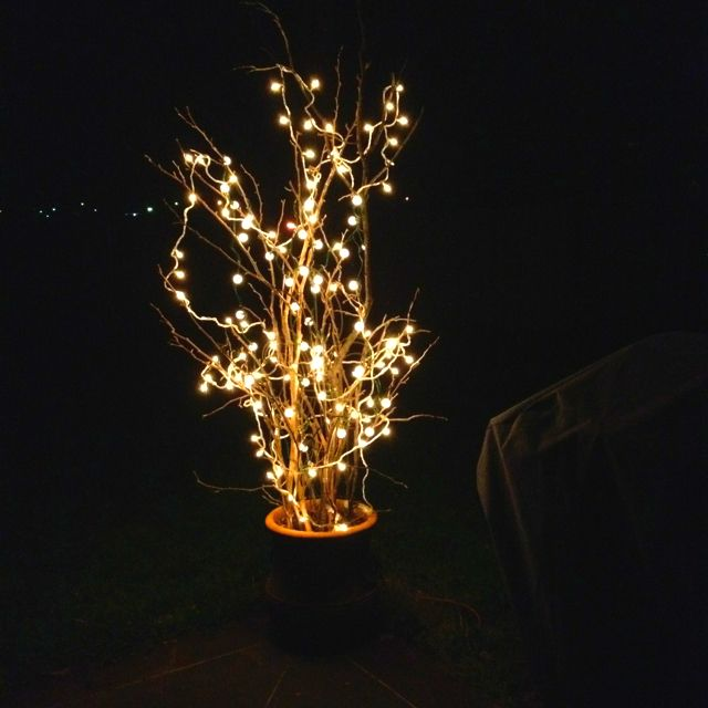 Fun Patio Lights Gathered th limbs in th yard put them in a large pot added 2 kinds limbs from the yard large pot 2 kinds of christmas lights fun patio lighting workwithnaturefo