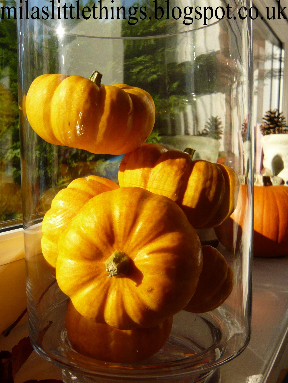 #windowsill #pumpkin #fall #decor