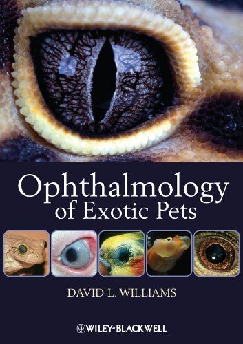 Ophthalmology of Exotic Pets Pdf Download e-Book Cosas que comprar
