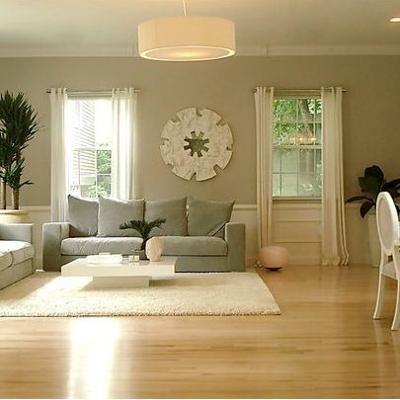 Sherwin Williams Universal Khaki Living Room Wood Floor