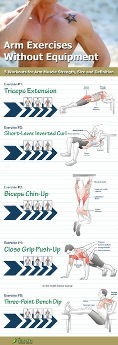 Arm Exercises Without Equipment: 5 Workouts for Arm Muscle Strength, Size and Definition - The Health Science Journal