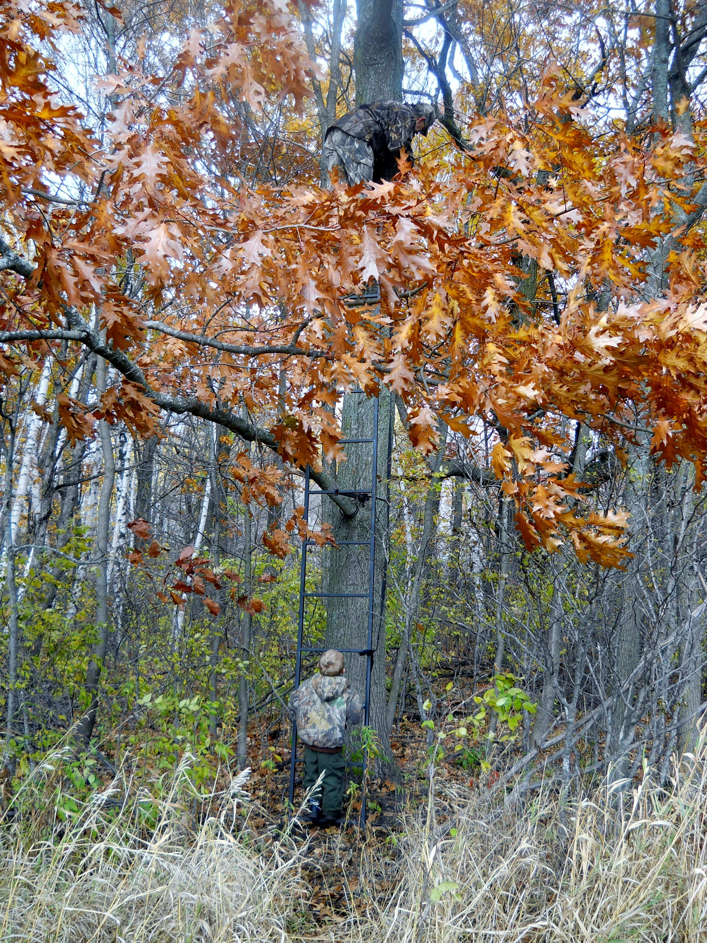 Joe helping Daddy secure the treestand for deer hunting