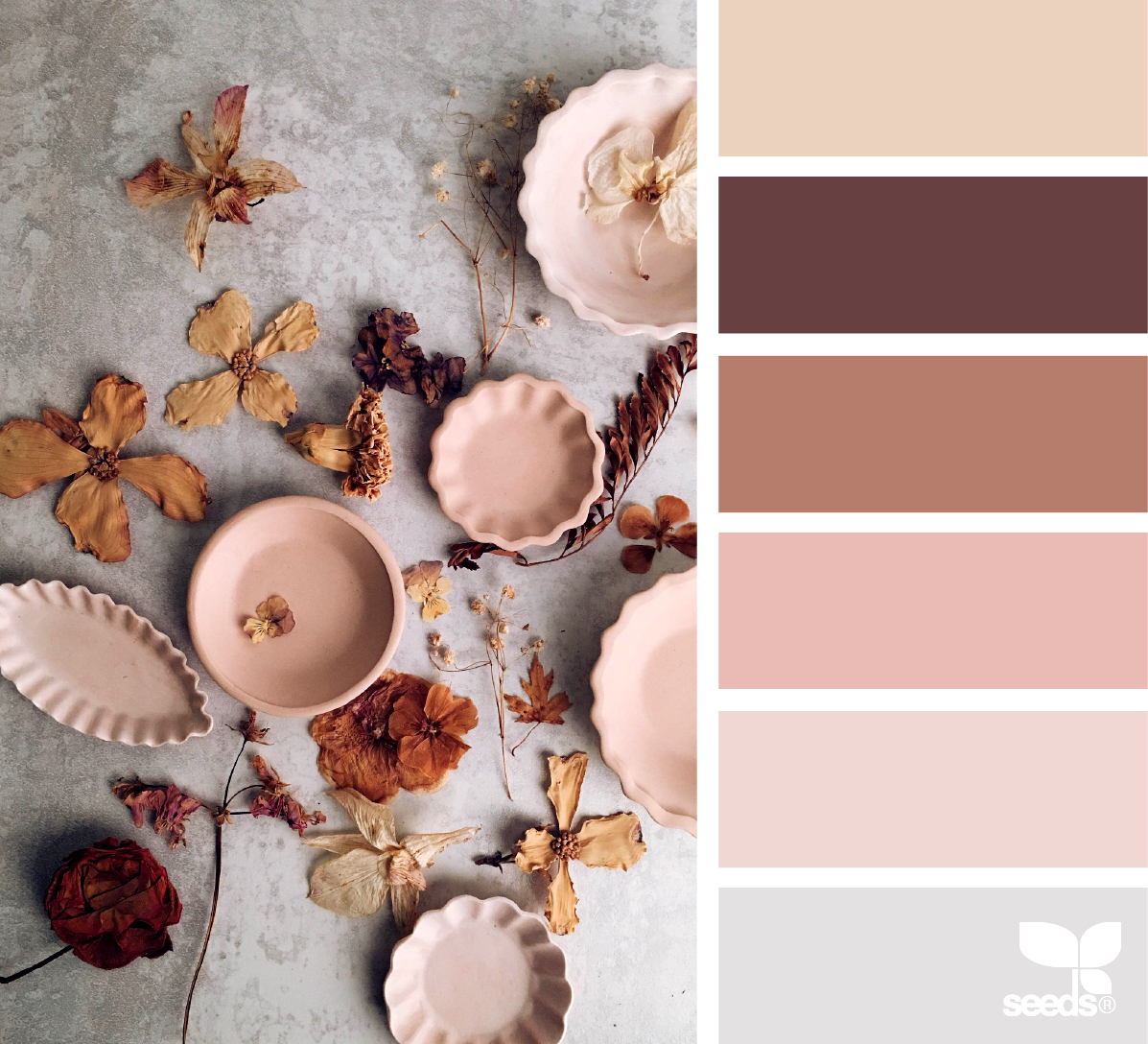 What Colors Go With Beige And Brown: Clay Color Palette [beige, Dark Brown, Rustic, Peachy Pink