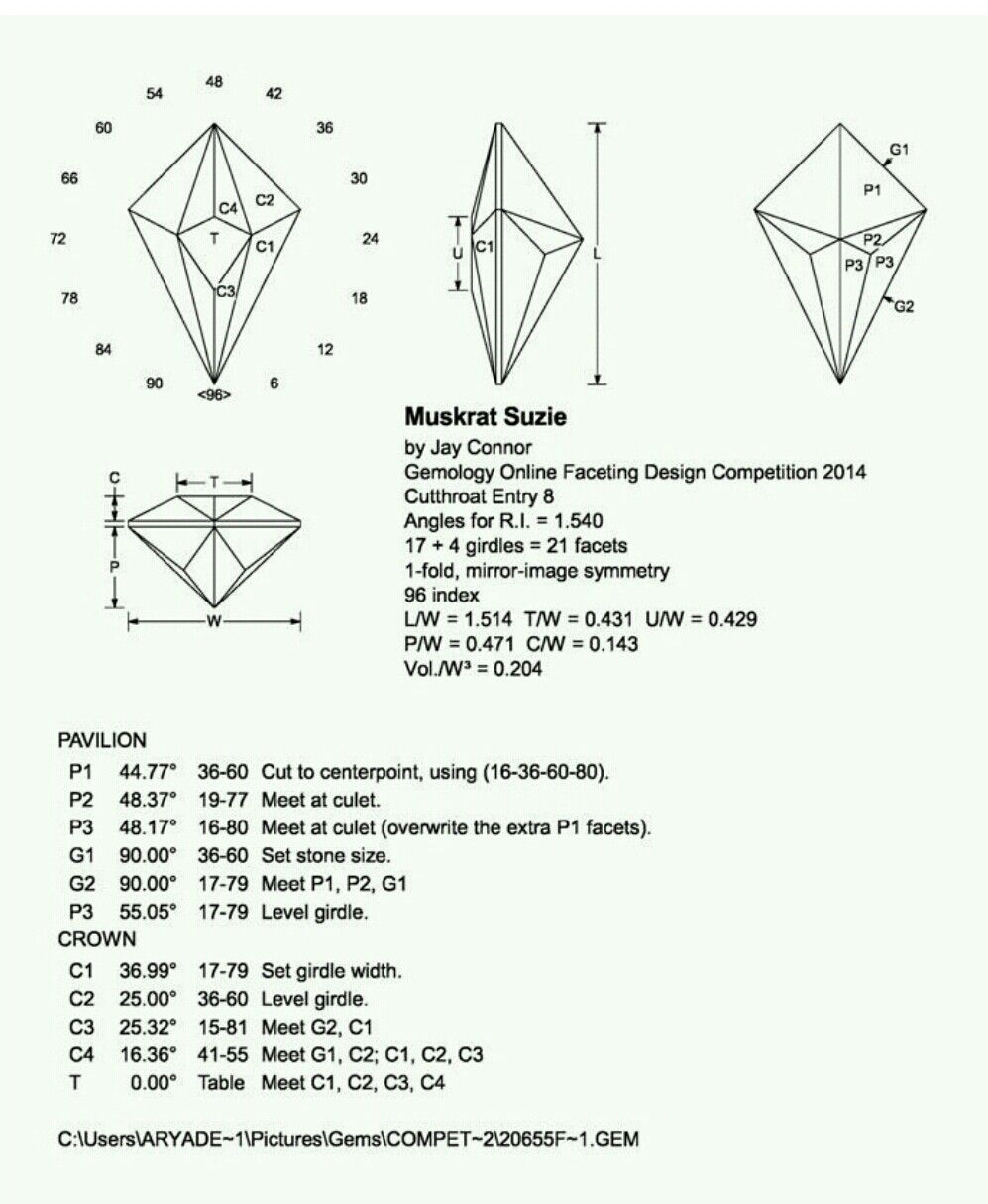 muskrat suzie gemstone jewelry jewelry art fossils diamond cuts month gemstones  [ 997 x 1215 Pixel ]