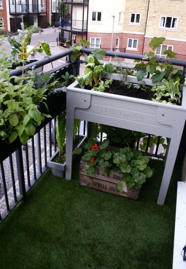 kräutergarten auf dem balkon pflanzen tisch kasten geländer ... - Umgestaltung Krautergarten Dachterrasse