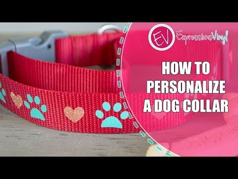 b71698f8bcded How to Personalize a Dog Collar with Heat Transfer Vinyl - YouTube ...