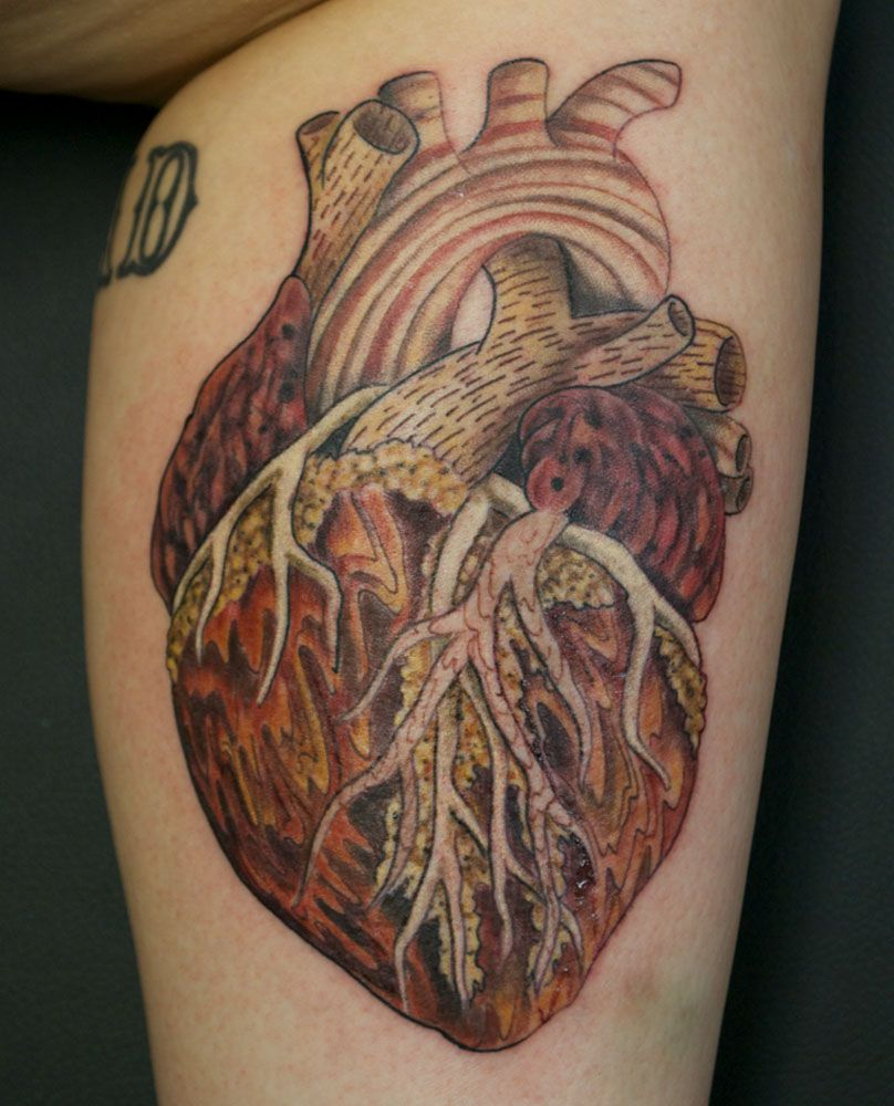 Pin Realistic Human Heart Tattoo On Forearm Tattoosso on