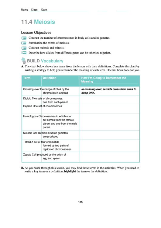 Need a Meiosis Lesson Plan? Here's a free template! Create