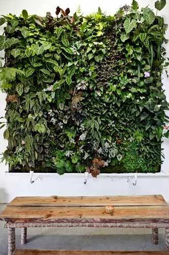 Fabulous wandpflanzen Vertikaler GartenBepflanzungHaus Und GartenVertikale GartenmauerInnen