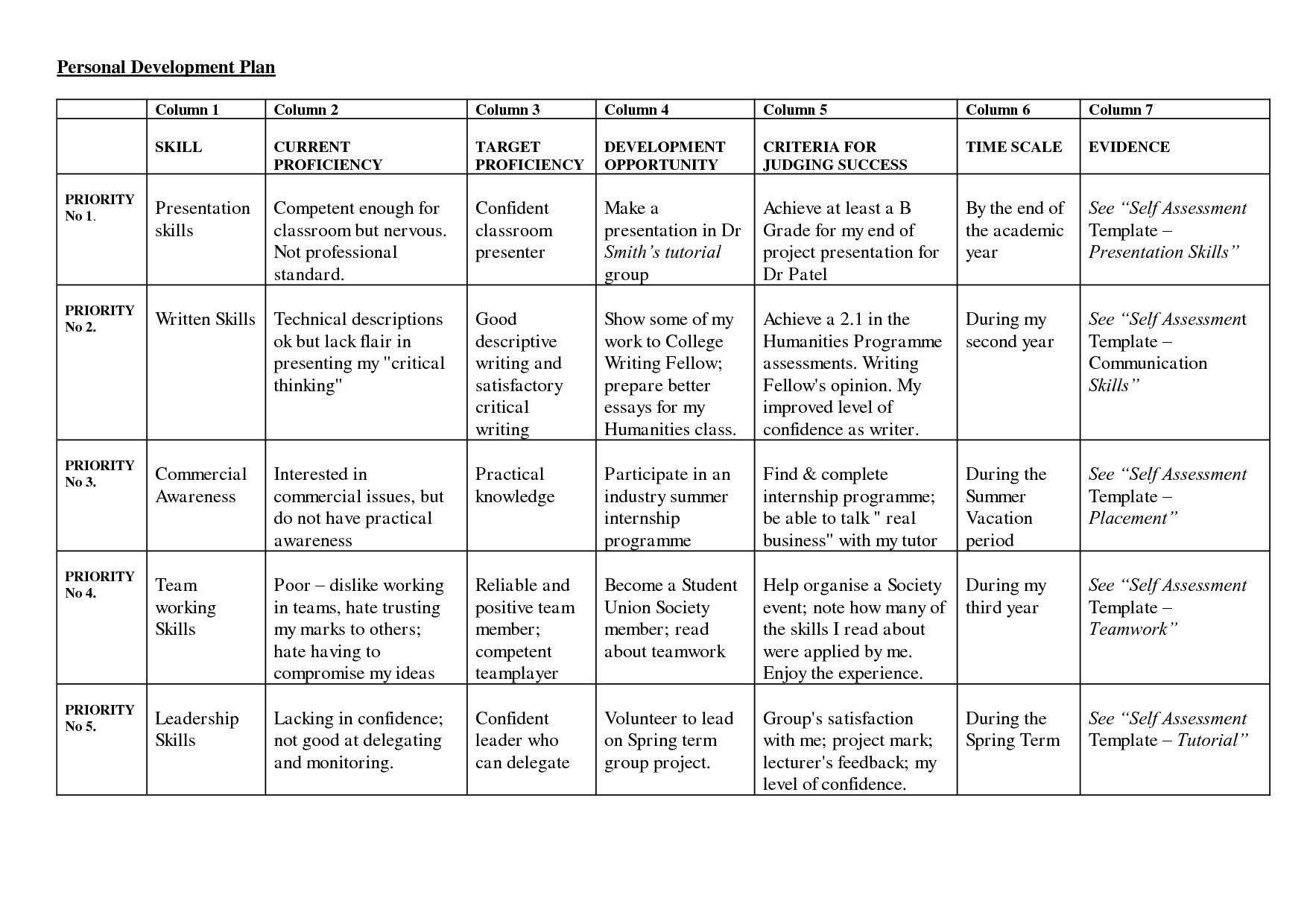 career plan example business development plan template in word – Business Development Plan Template