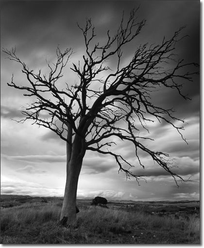 Jeremy turner landscape photographer · black n whitecolor