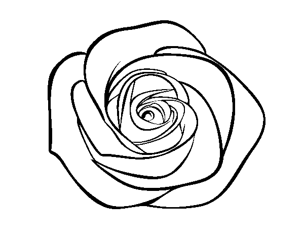 Rose Coloring Book Pages Coloring Page Rose Flower To Color