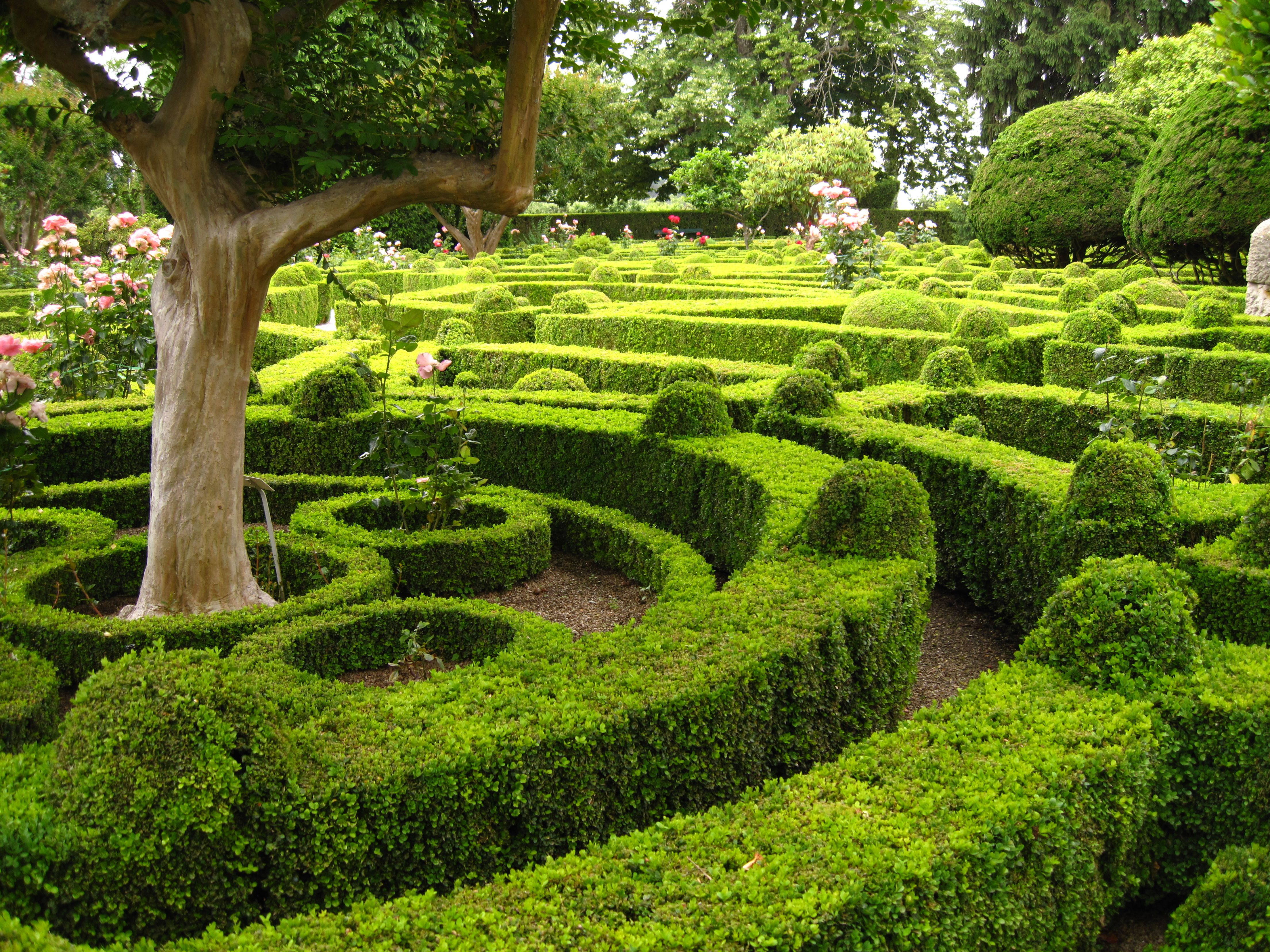 Mateus Palace And Gardens Garden Ftempo