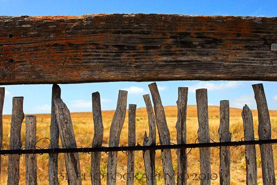 Southest Home Decor-Texas Fine Art Photography-Rustic Western Decor