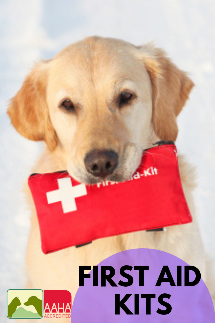 Home Pet Emergency First Aid Kit Pets First