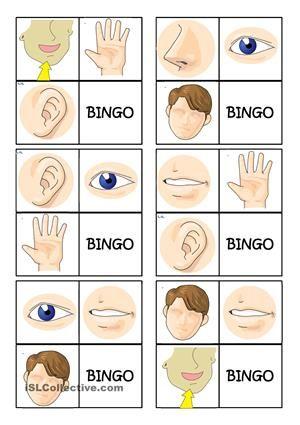 b>Body</b> <b>parts</b> <b>bingo</b> worksheet - Free ESL ...