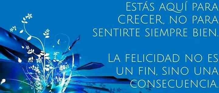 La felicidad es una consecuencia!!!